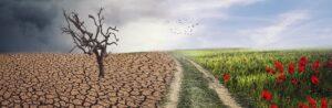 Klima Banner