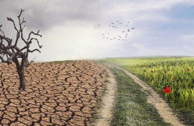 Anfrage Klimamusterstadt